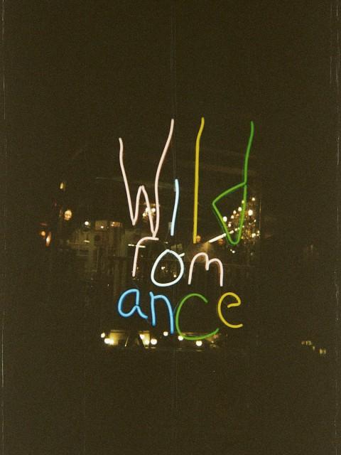 wild romance Amsterdam light