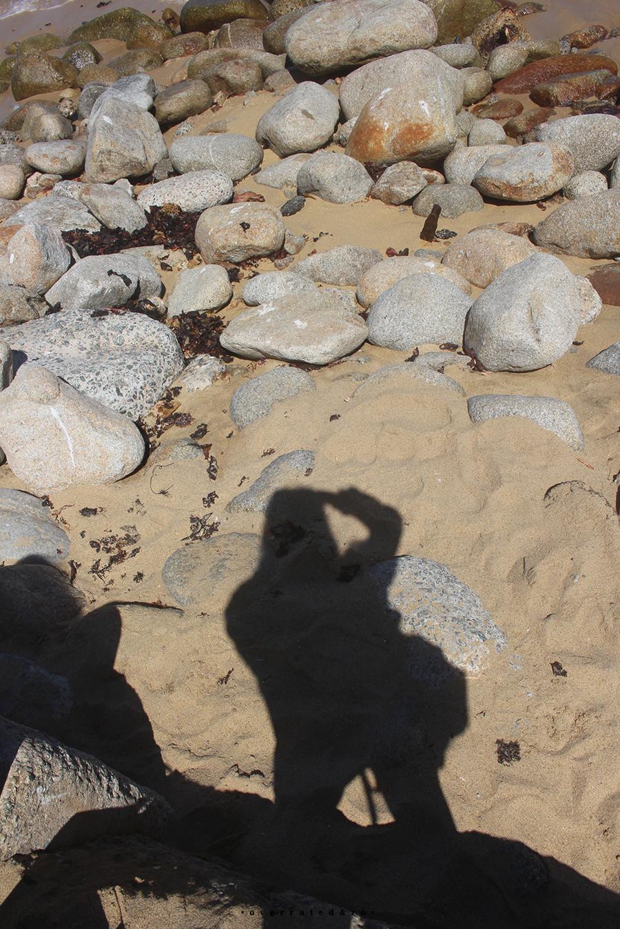shadow1 Suzanne Dirne overratedenzo