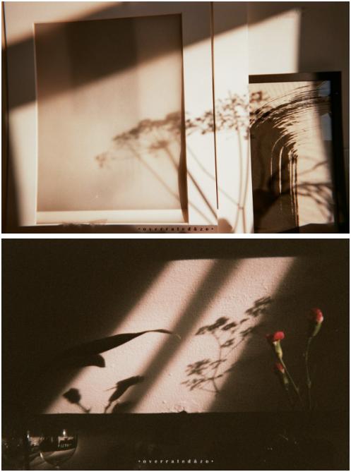 • Shadow •