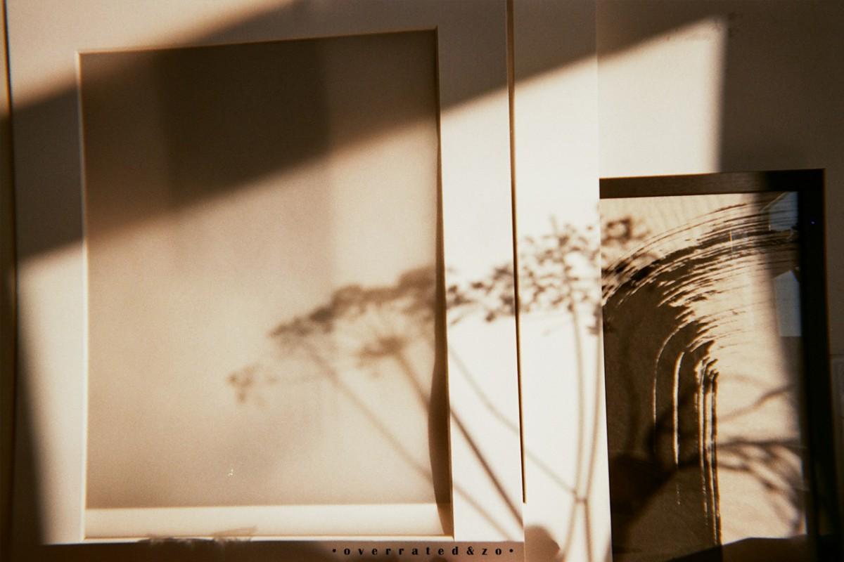 shadow flowers amsterdam