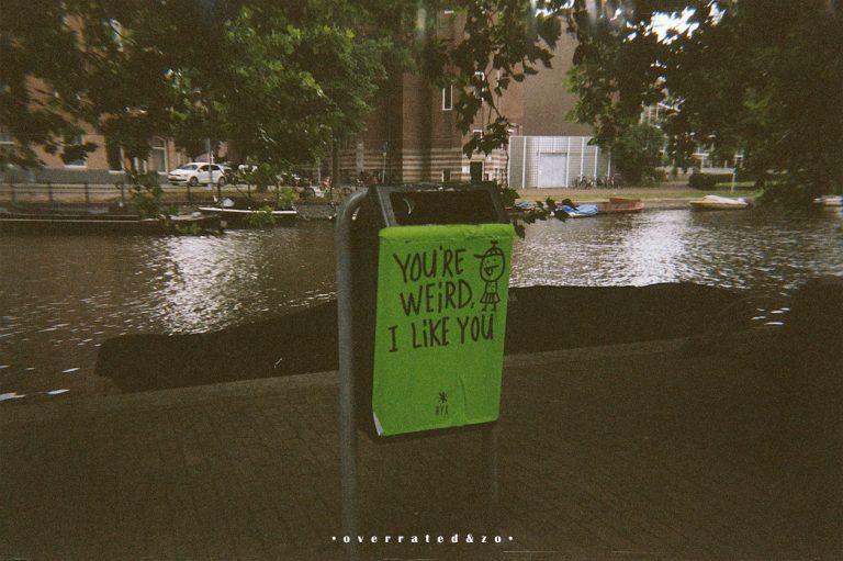 • I like you •